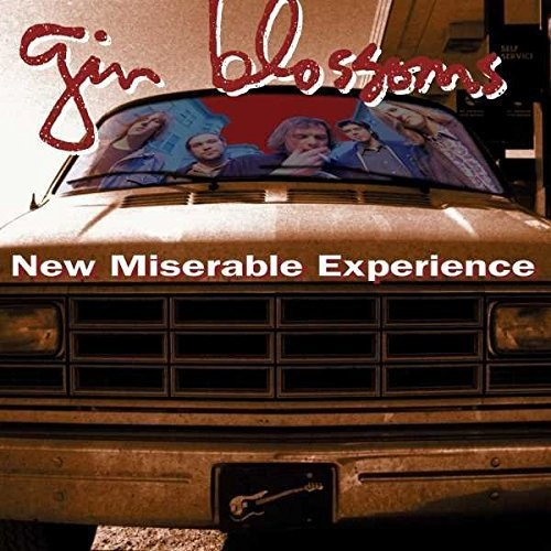 New Miserable Experience